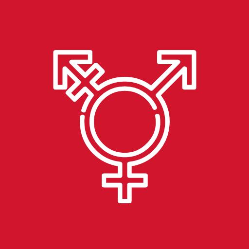Travestis y Transexuales